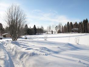 Photo: Näkymä entiseltä pihalta.. uuden omistajarouvan polku lintujen ruokintapaikalle 25.2.2010