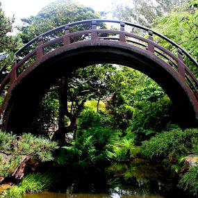 by Amory Godwin Grijaldo - Buildings & Architecture Bridges & Suspended Structures