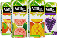 Suco Del Valle 1 lt