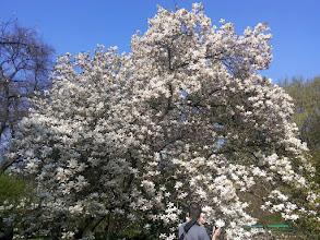 Photo: F4230647 w Ogrodzie Botanicznym