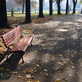 by Emil Chuchkov - City,  Street & Park  City Parks ( cuckove skopje macedonia park )