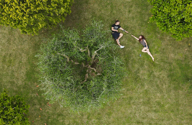 giochi nel giardino di MWALTER