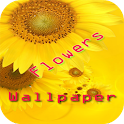 Flowers Labs Wallpaper icon
