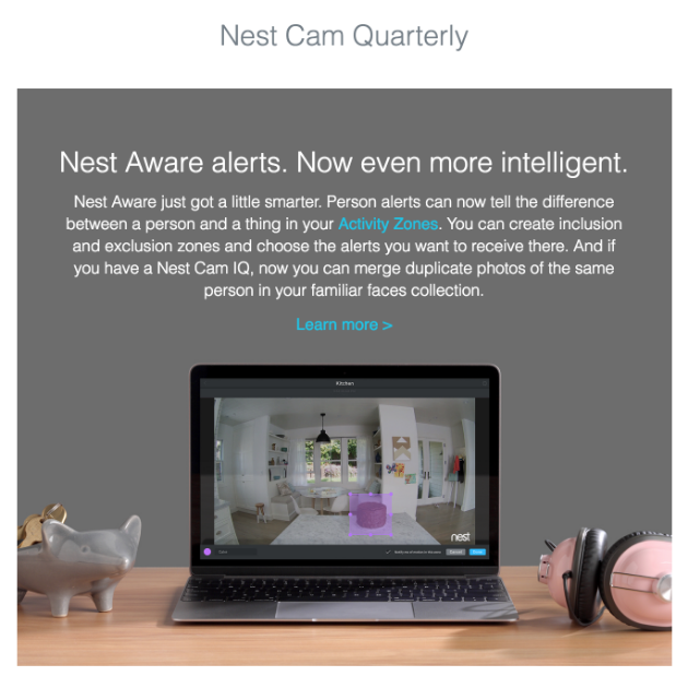 Nest Cam Quarterly