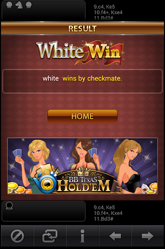 배틀체스 싱글(Battle Chess Single) screenshot 16