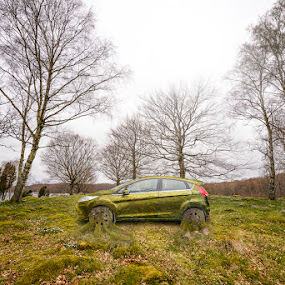 Ford Fiesta Green Edition by Sergei Pitkevich - Digital Art Things ( car, nature, grass, d800, green, fiesta, ford, nikon, spring, photoshop )