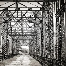 Old Bridge by Jennifer  Loper  - Black & White Buildings & Architecture ( footbridge, steel, old, unused, bridge )