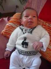 Photo: Beautiful sweater brought back from Peru by TantAyla
