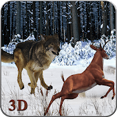 Angry Wolf Jungle 3D
