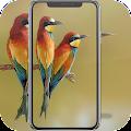 Beautiful Bird Wallpaper APK