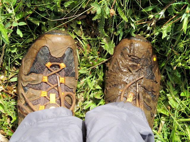 One muddy shoe after slipping into a bog