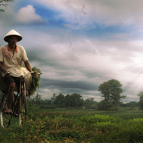 return work by Yanuar Nurdiyanto - Digital Art People ( work people. digital imaging, sunset, landscape, portrait )