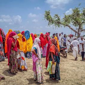 Seeking for unskilled work at MGNREGA by Brijesh Meena - People Street & Candids ( outdoor photography, peoples, outdoor, indian, street photography,  )