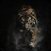Dark Tiger Live Wallpaper