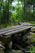Photo: Wooden walk way at Kettle Pond State Park by Wesley Morris