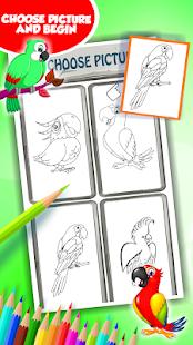 Papoušek omalovánky vytisknutí - náhled