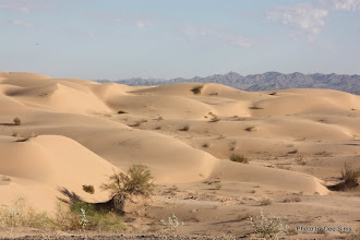 Photo: (Year 3) Day 37 - Sand Dunes With the Chocolate Mountains in the Background #1