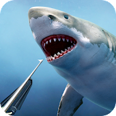 Spearfishing wild shark hunter