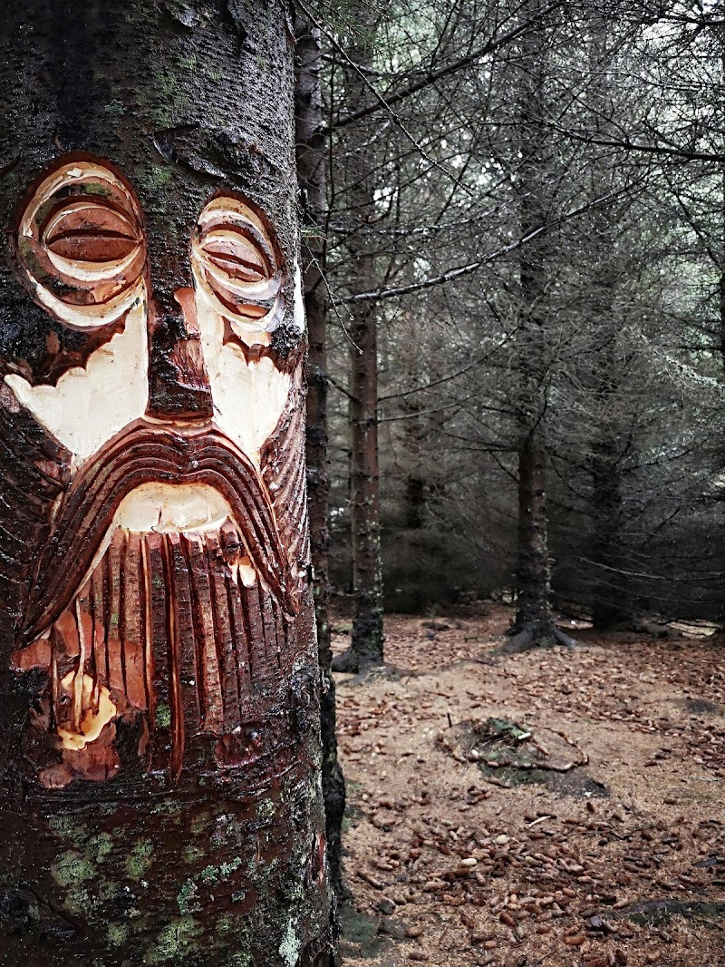 Viking di PifferiValentina