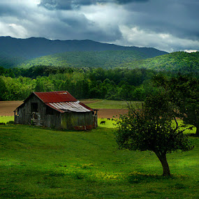 Country Barn by Gary Pope - Landscapes Travel ( barn, tennessee, landscape, rural, country )