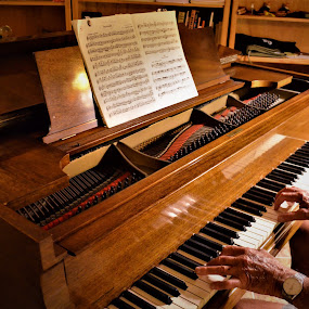 Playing a Baby Grand Piano by Sheri Fresonke Harper - Artistic Objects Musical Instruments ( music, musical instrument, playing piano, baby grand piano, grand piano,  )
