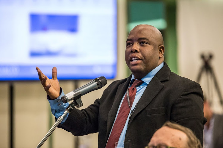 Tshwane mayor Stevens Mokgalapa could find himself in parliament after the elections.