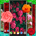 Red Rose Live Wallpaper 🌹 Romantic Wallpapers icon