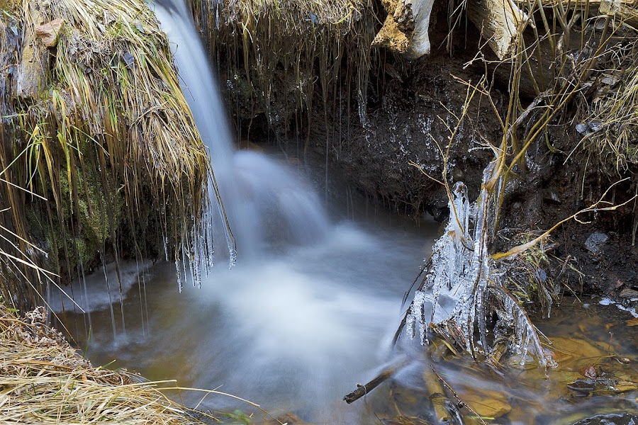 Flowing Grace by Randy Dannheim - Landscapes Waterscapes ( flowing water., winter, veiled water falls, ice crystals, flowing water, arizona, waterscapes, frozen,  )