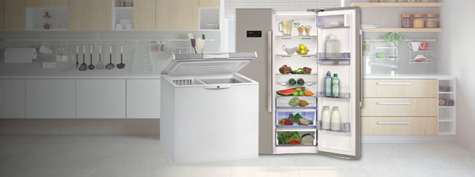 Fridge And Freezers Gas Appliances Builders