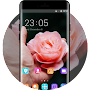 Flower theme  hand rose APK icon