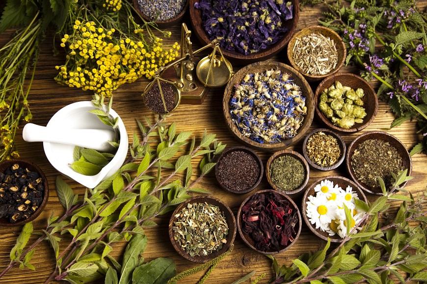 Thành phần thảo dược tốt cho sức khỏe