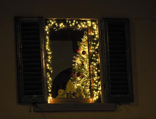 lights  di Francesca Corti