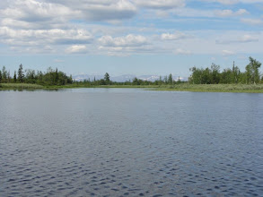 Photo: Вышли в озеро.