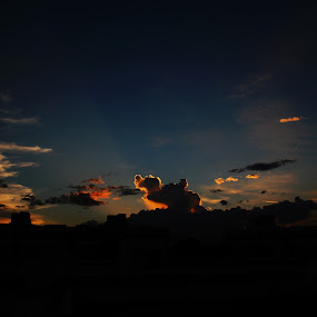 Camel in the sky by Niranjan Rajendran - Landscapes Sunsets & Sunrises ( orange, camel, sky, nature, sunset,  )