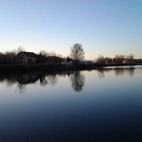 Evening by Nat Bolfan-Stosic - Nature Up Close Water ( reflection, blue, sunset, lake, evening )