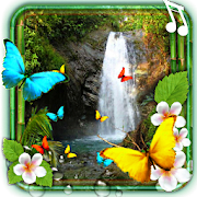 Waterfalls Tropical Jungles