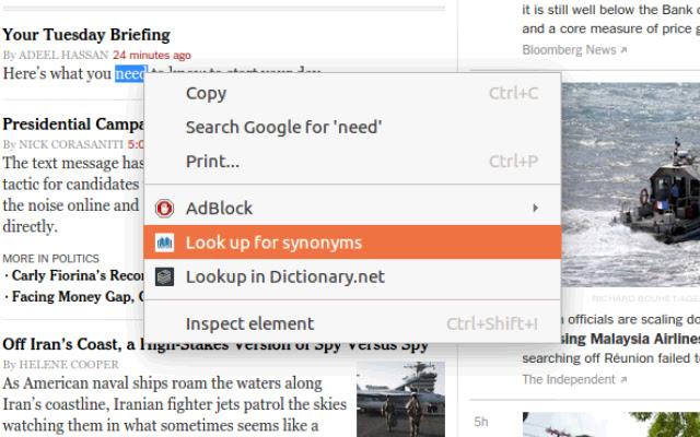 Thesaurus.net Extension