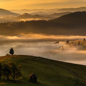 Paltinu-Romania by Jeno Major - Landscapes Prairies, Meadows & Fields ( hills, nature, fog, romania, landscapes )