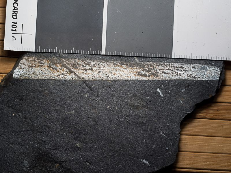 Flore Carbonifère des Alpes Françaises part 1 - Page 5 E0WH6zejkNZPjSXkQZwVRzOdMIdjgtEAq7iJhY-R6NTE9UzCZKPGZSr-F4Lj2KAJAYWgdKi_6ACWUQ=w1920-h1080-no