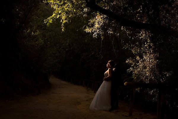 Fotógrafo de bodas Francisco Amador (amador). Foto del 02.08.2016
