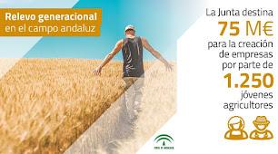 La Junta facilita la constitución de empresas por jóvenes agricultores.