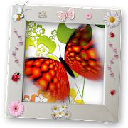 Butterfly Raising - My Butterfly garden