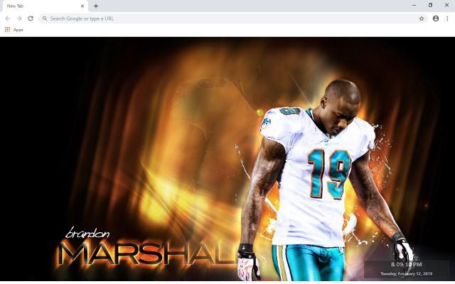 NFL Miami Dolphins New Tab