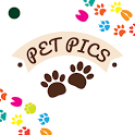 Pet Pictures - Photo Editor - Pet Face Wallpapers icon