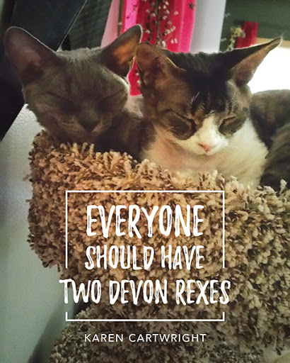 Everyone Should Have Two Devon Rexes cover