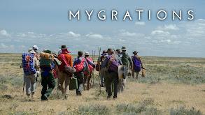 Mygrations thumbnail