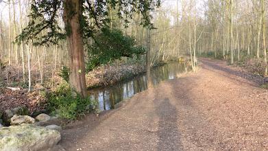 Photo: L'un des ruisseaux du bois de Vincennes