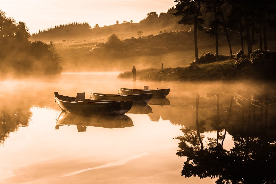 Still by Peter Stevens - Landscapes Waterscapes ( water, fish, morning, boat, mist,  )
