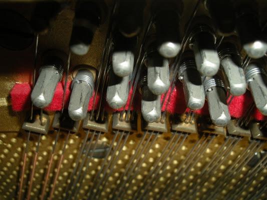 Corde del Pianoforte di xAlycesx