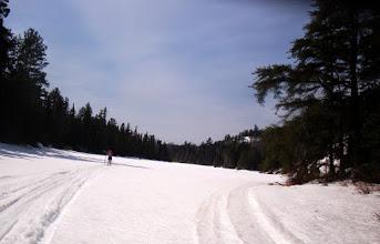 Photo: Heading back ( north) near McLeod's Creek
